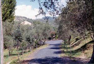 1960_4
